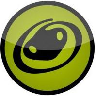 Python Werkschoenen